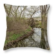 Whitewater River Spring 41 A Throw Pillow