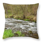 Whitewater River Spring 44 Throw Pillow