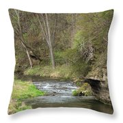 Whitewater River Spring 45 A Throw Pillow