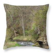 Whitewater River Spring 45 B Throw Pillow