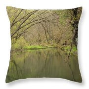 Whitewater River Spring 51 Throw Pillow