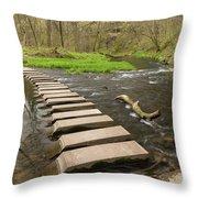 Whitewater River Spring 52 Throw Pillow