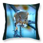 Who Are You Looking At? Throw Pillow