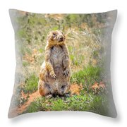 Who Dat? Throw Pillow