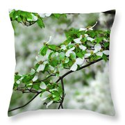 Who Doesnt Love The Spring Throw Pillow