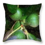 Who Gives A Fig Throw Pillow