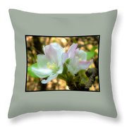 Who Here Has Seen Apple Blossoms In Late Summer Throw Pillow