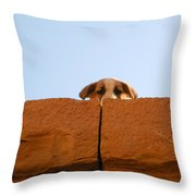 Who Is Looking? Throw Pillow