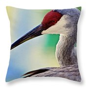 Who Is Out There?  Throw Pillow
