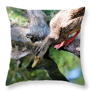 Who Is That I See Staring At Me Throw Pillow