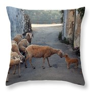 Who Is The Boss Throw Pillow
