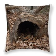 Our Hollowed Home Throw Pillow