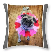 Who Loves Ya Baby Throw Pillow