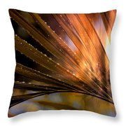 Who Stopped The Rain Throw Pillow