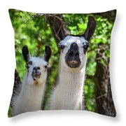 Who You? Throw Pillow