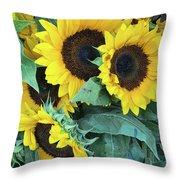 Wholesale Throw Pillow