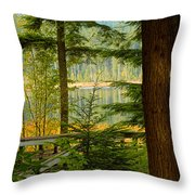 Whonnock Lake Through The Trees Throw Pillow