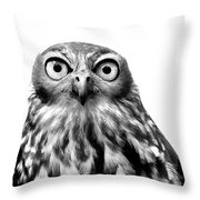 Whoo You Callin A Wise Guy Throw Pillow