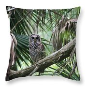 Whoooo Are You Throw Pillow by April Wietrecki Green