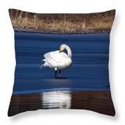 Whooper Swan 2 Throw Pillow