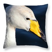 Whooper Swan Throw Pillow