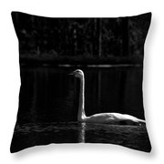 Whooper Swan In Bw 2 Throw Pillow