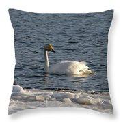 Whooper Swan Nr 3 Throw Pillow