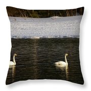 Whooper Swan Nr 9 Throw Pillow