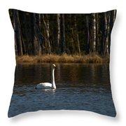 Whooper Swan Of Liesilampi 3 Throw Pillow