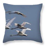Whooper Swans In Flight Throw Pillow