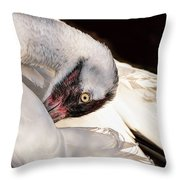 Whooper1 Throw Pillow