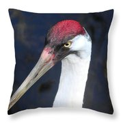 Whooping Crane Mug Shot Throw Pillow