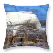 Whooping Crane Reflection Throw Pillow