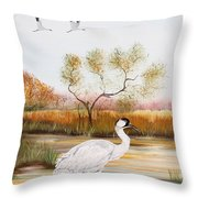 Whooping Cranes-jp3152 Throw Pillow