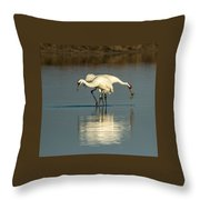 Whooping Cranes Throw Pillow