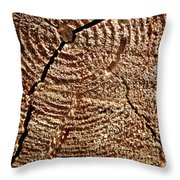 Whorl  Throw Pillow