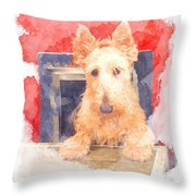 Whos That Dog In The Window? Throw Pillow