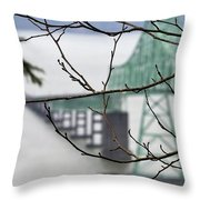 Who's The Architect? Throw Pillow