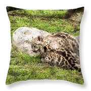Who's The Boss Here? Throw Pillow