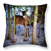 Who's There Throw Pillow
