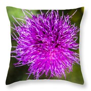 Whoville Throw Pillow