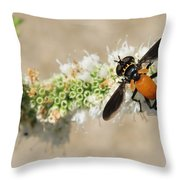 Why Fly Throw Pillow