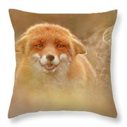 Why So Serious - Funny Fox Throw Pillow