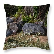 Wicked Bird Throw Pillow
