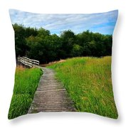 Wide Angle Landscape Throw Pillow