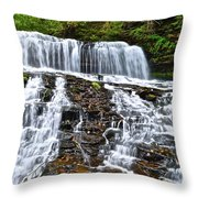 Wide Flowing Falls Throw Pillow