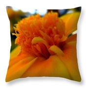Wide Open Throw Pillow