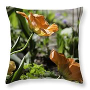 Wide Open Tulips Throw Pillow