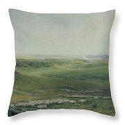 Wide Pastures Throw Pillow