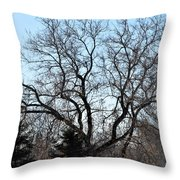 Widespread Throw Pillow